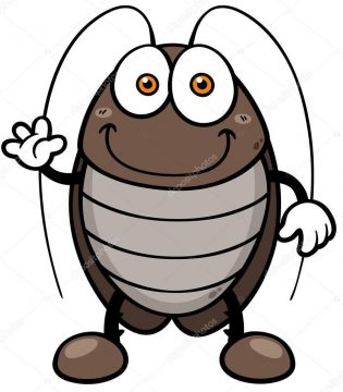 Cucarachas para colorear