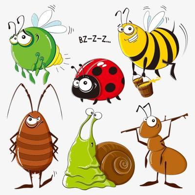 Insectos para colorear