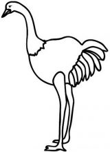 Avestruz para colorear (9/32)