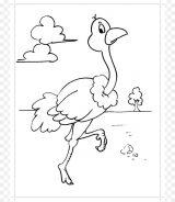 Avestruz para colorear (32/32)
