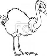 Dibujos de avestruz para colorear (4/32)