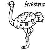 Imágenes de avestruz para pintar (6/13)