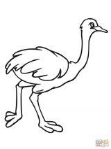 Imágenes de avestruz para pintar (8/13)