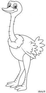 Imágenes de avestruz para pintar (10/13)