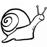Anélidos y gusanos para colorear (31/123)