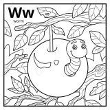 Anélidos y gusanos para colorear (65/123)