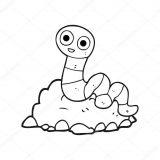 Anélidos y gusanos para colorear (66/123)
