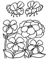 abejas para dibujar (20/20)