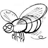 dibujos de abejas para imprimir y colorear (1/9)