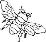 dibujos de abejas para imprimir y colorear (2/9)