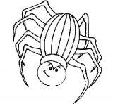 Arañas para colorear (3/4)