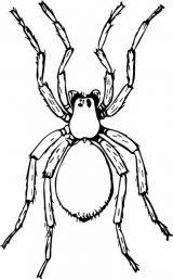 Arañas para colorear (4/20)