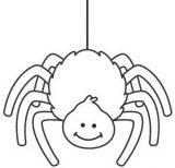 Arañas para colorear (8/20)