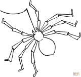 Arañas para colorear (10/20)
