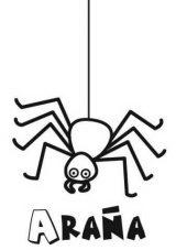 Arañas para colorear (5/20)