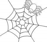 Arañas para colorear (7/20)