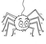 Arañas para colorear (6/20)