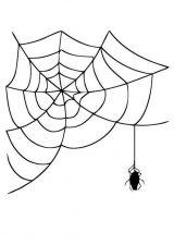 Arañas para colorear (12/20)