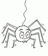Arañas para colorear (13/20)