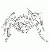 Arañas para colorear (7/10)