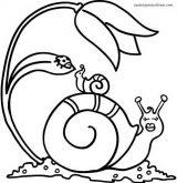 imagenes de caracoles para colorear (2/20)