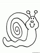 imagenes de caracoles para colorear (12/20)