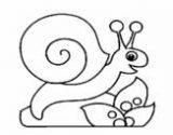 imagenes de caracoles para colorear (14/20)