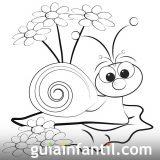 imagenes de caracoles para colorear (17/20)