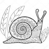 imagenes de caracoles para imprimir (1/8)