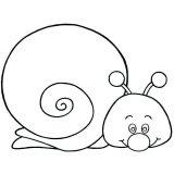 dibujos de caracoles para colorear (11/20)