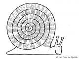 dibujos de caracoles para colorear (20/20)