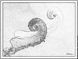 Imágenes de ciempiés para pintar (18/20)