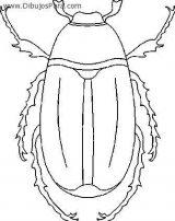 Escarabajos para colorear (5/12)