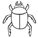 Escarabajos para colorear (9/12)