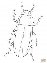 Dibujos de escarabajos para colorear (4/12)