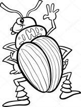 Dibujos de escarabajos para colorear (7/12)