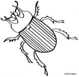 Dibujos de escarabajos para colorear (11/12)