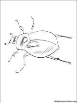 Dibujos para colorear de escarabajos (8/12)
