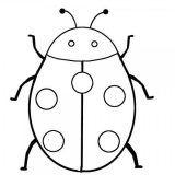 Escarabajos para colorear para niños (3/16)