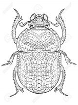 Escarabajos para colorear para niños (13/16)