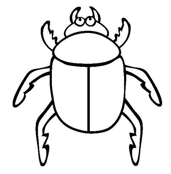 Escarabajos Para Colorear | www.imagenesmy.com