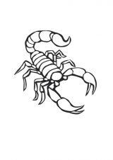 Imágenes de escorpiones para colorear (7/12)