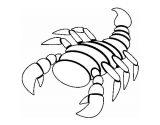Dibujos de escorpiones para imprimir (9/12)