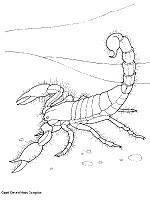 Dibujos de escorpiones para colorear e imprimir (1/8)