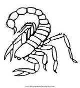 Dibujos de escorpiones para colorear e imprimir (6/8)