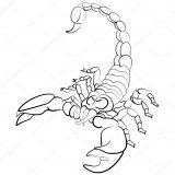 Dibujos de escorpiones de colorear (4/6)