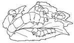 Dibujos para colorear de gusanos de seda (3/8)