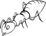 Hormigas para colorear (4/16)