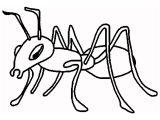 Dibujos de hormigas para colorear (12/16)