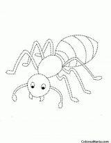 Dibujos de hormigas para colorear (14/16)